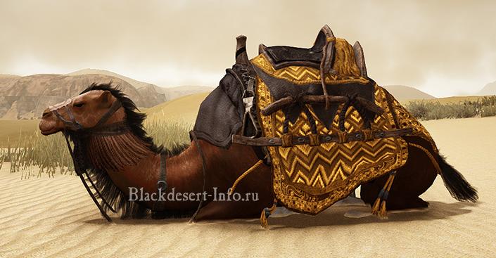 транспорт в black desert