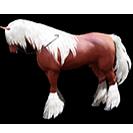 black desert лошадь 26