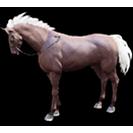 black desert лошадь 28