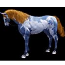 black desert лошадь 29