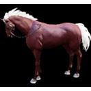 black desert лошадь 30