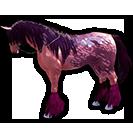 black desert лошадь 35