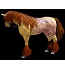 black desert лошадь 36