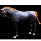 black desert лошадь 37