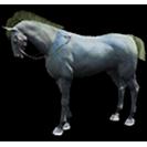 black desert лошадь 38