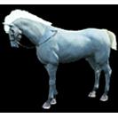 black desert лошадь 49