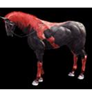 black desert лошадь 53