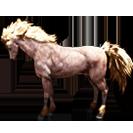 black desert лошадь 76