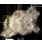 первоклассный густой мех
