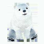 pet_polarbear_0001_1