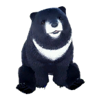 pet_polarbear_0011_1