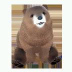 pet_polarbear_0012_1