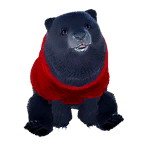 pet_polarbear_0015_1
